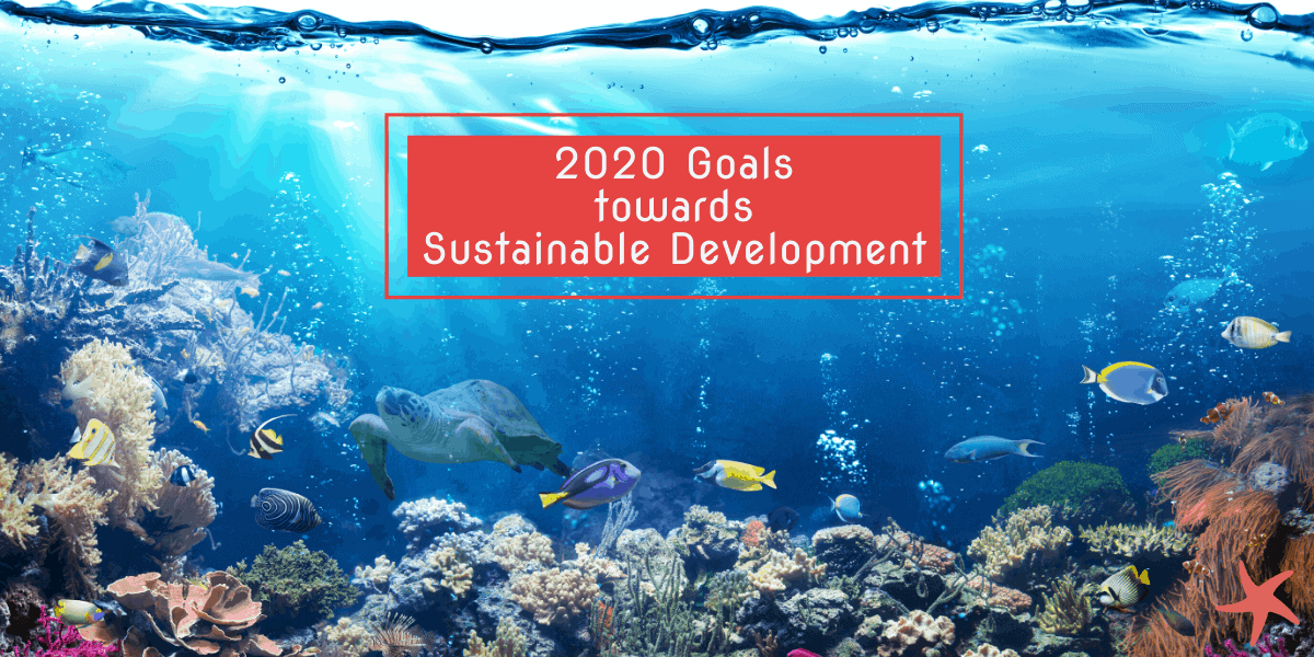 2020 Goals towards Sustainable Development
