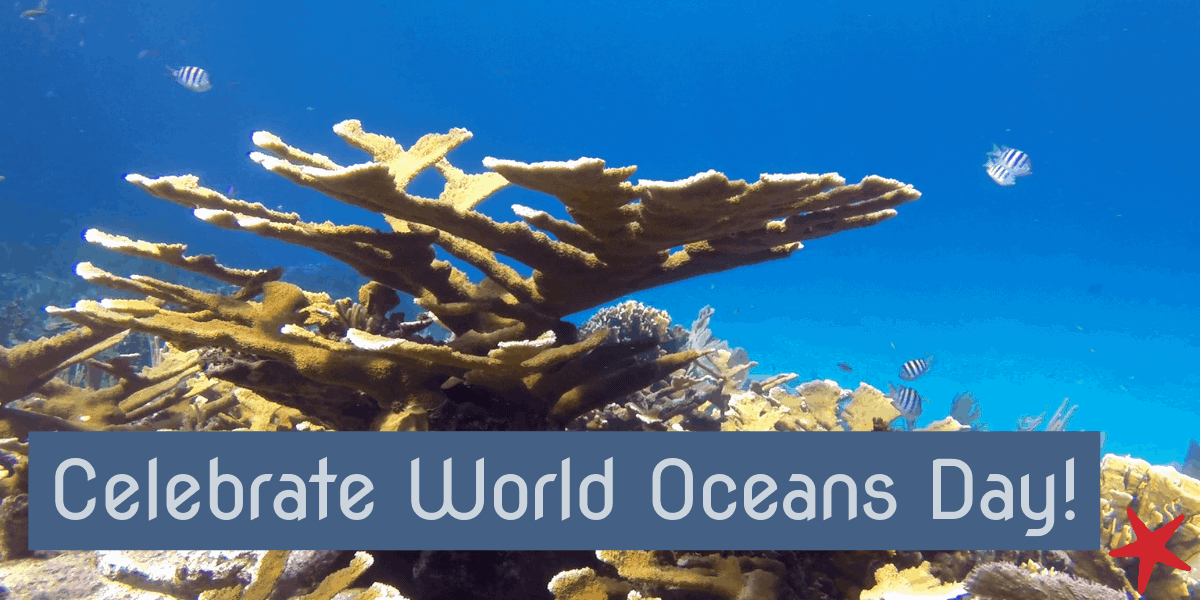 Celebrate World Oceans Day, June 8th, 2019