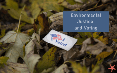 Plastic-Free July – Voting Matters