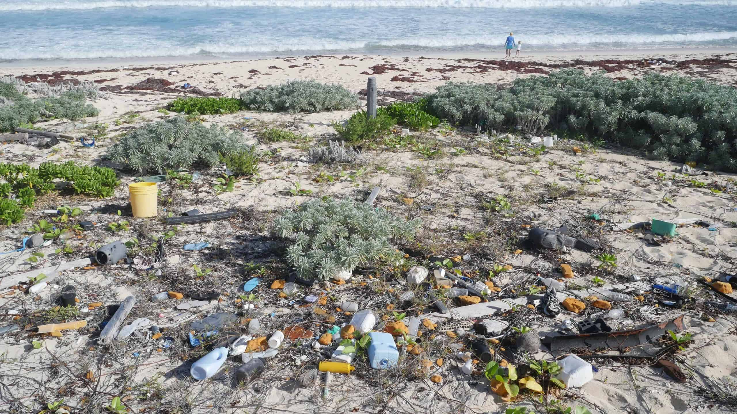 Why We Need To Understand the History of Plastic Before We Can Tackle The Problem
