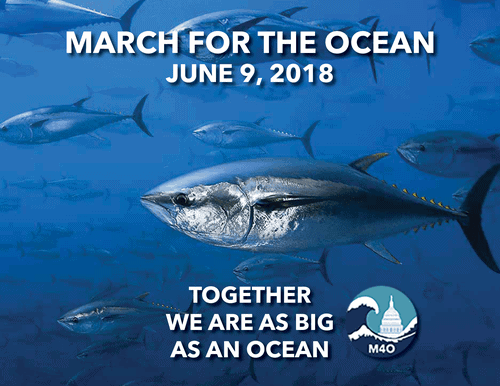 March For The Ocean & Against Plastic Pollution on June 9th