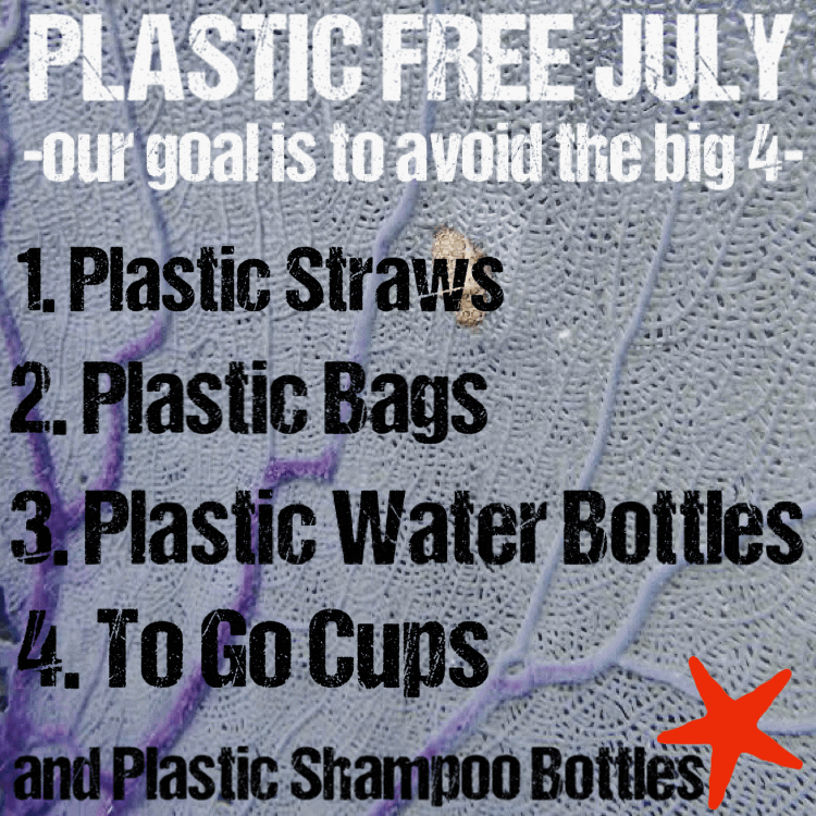 5 Tips to Help Create a Plastic-Free July