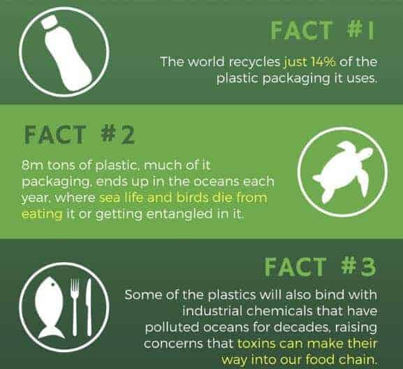 5 Facts about Plastic Recycling & Pollution