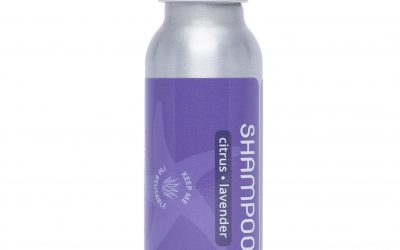 Travel Shampoo – Citrus Lavender