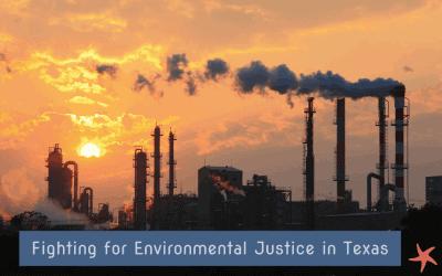 Plastic-Free July 2020 – Thru a Different Lens, Part 2